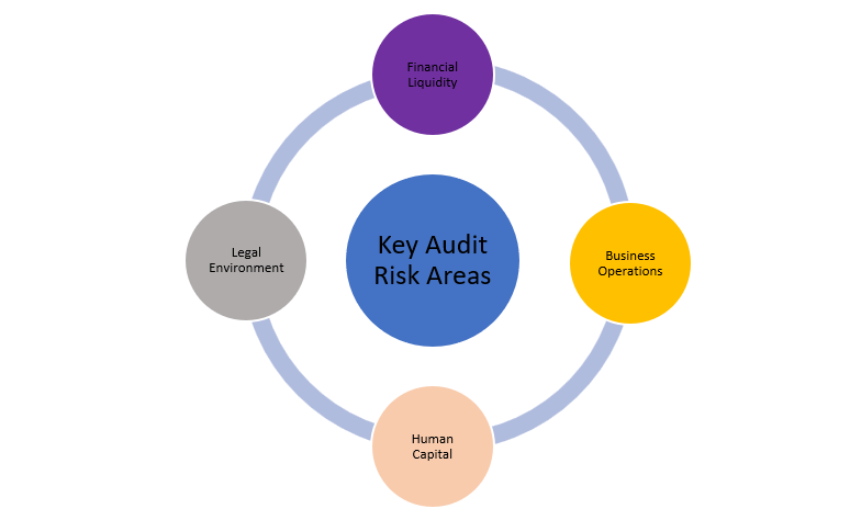 Figure 5: The 4 Key audit risk factor areas associated with COVID19 Extractive Industries Sector environment reaction.
